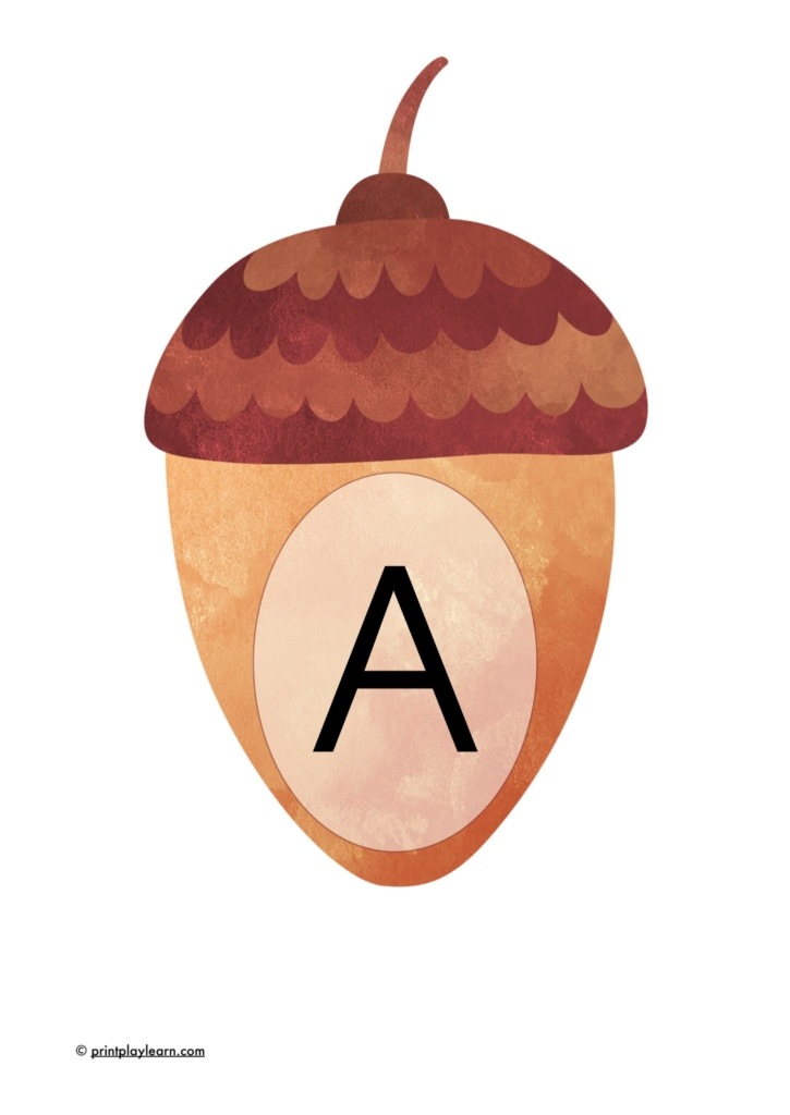 acorn display lettering alphabet a-z